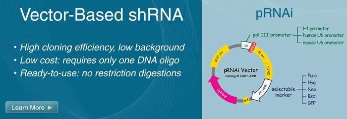 Lentiviral shRNA Vectors